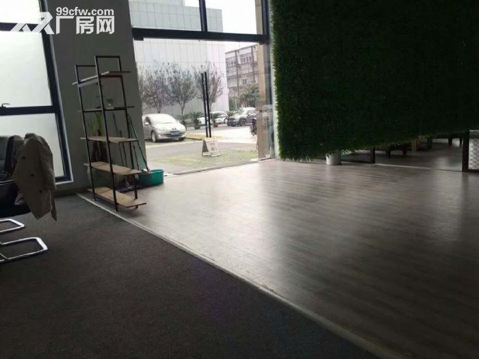 滨江摄影办公工作室,拎包看过来了-图(7)