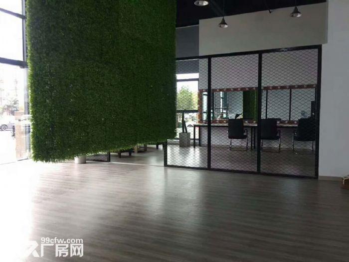 滨江摄影办公工作室,拎包看过来了-图(5)