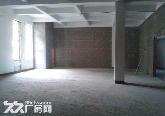 200方厂房出租,办公电商仓库摄影-图(4)