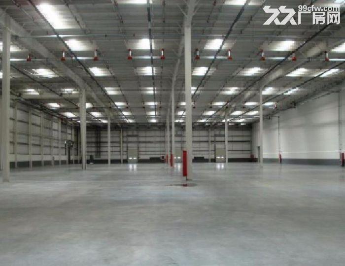 北辰陆路港物流园10万平米丙二类高台库出租-图(2)