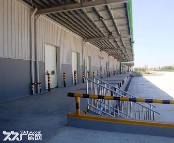 北辰陆路港物流园10万平米丙二类高台库出租-图(3)