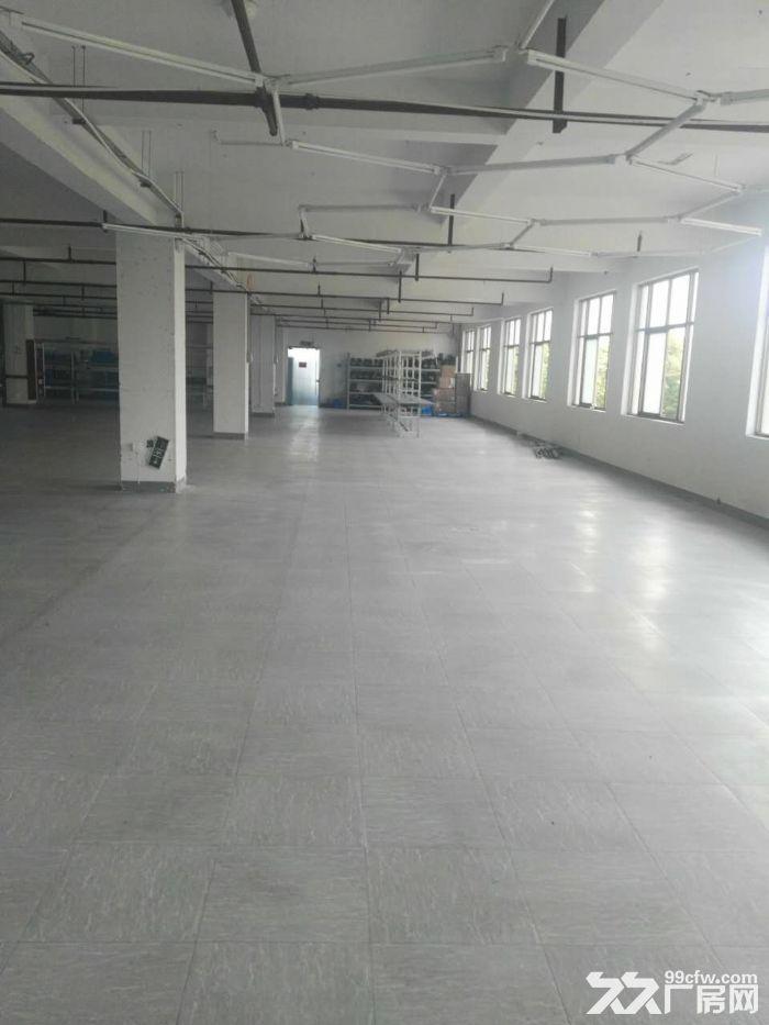 滨江长河600方出租,适合服装仓储办公等-图(5)