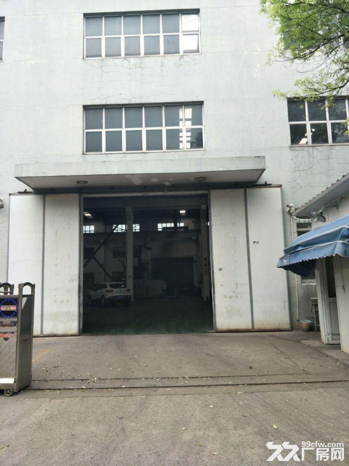 嘉定黄渡工业区3100平米独院厂房仓库出租!可分租高度12米带5吨行车6部-图(4)