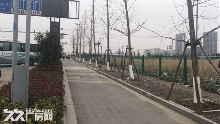 凤凰山北5亩土地起售,欢迎内外公司企业实地考察-图(4)