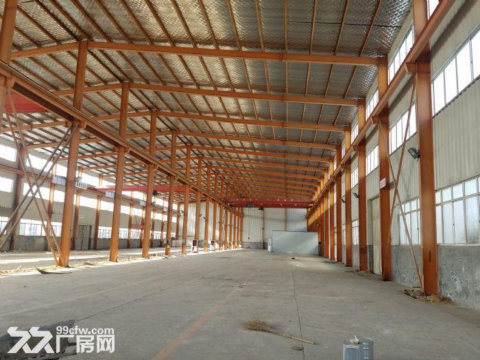 钢结构厂房出租大面积-图(1)