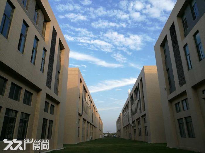 〖50年独立产权〗完善的运营模式独栋双拼厂房首层7米出售-图(1)