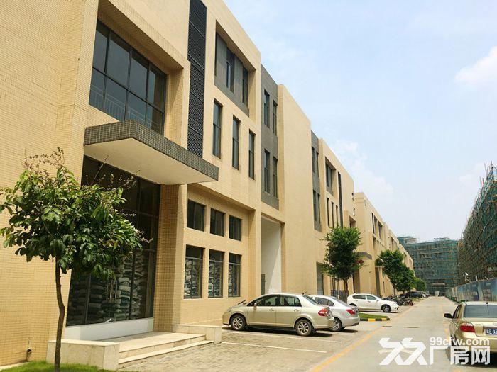 〖50年独立产权〗完善的运营模式独栋双拼厂房首层7米出售-图(5)