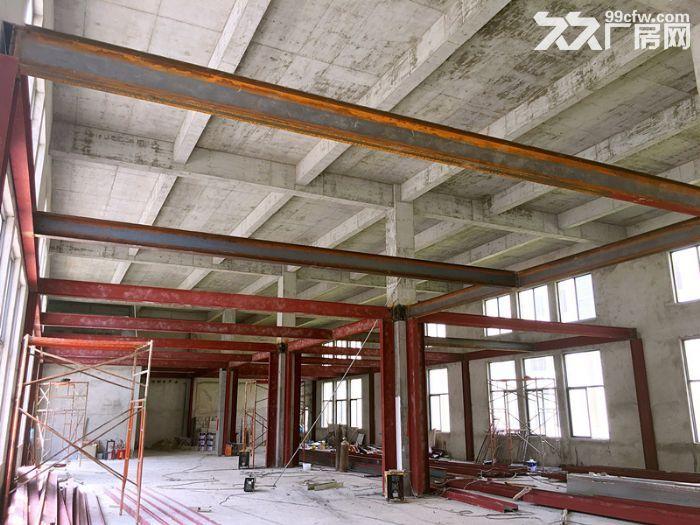 〖50年独立产权〗完善的运营模式独栋双拼厂房首层7米出售-图(7)