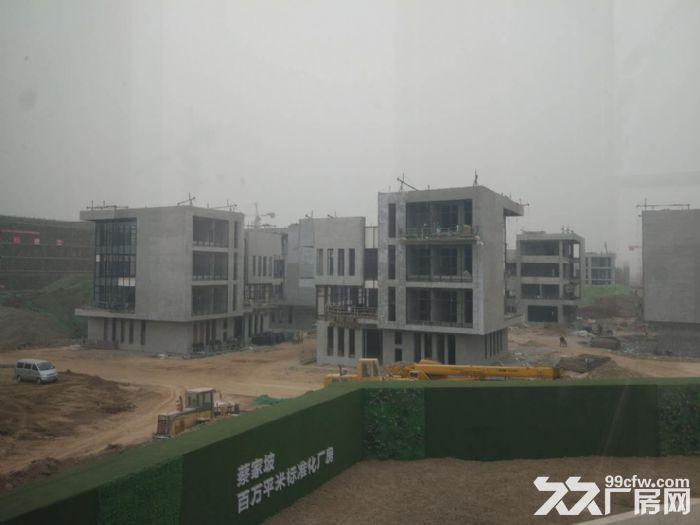 蔡家坡百万平方米标准化厂房出售-图(4)