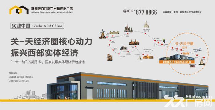 蔡家坡百万平方米标准化厂房出售-图(5)