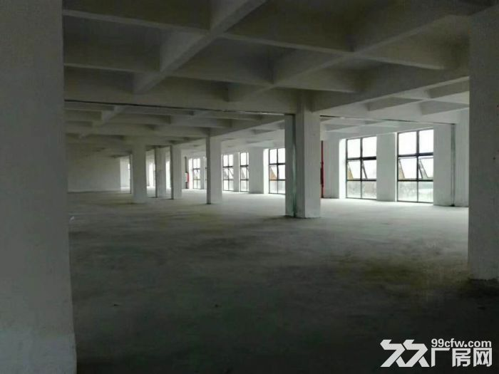 独栋亚运大道边3吨货梯石基全新标准三层出租-图(1)