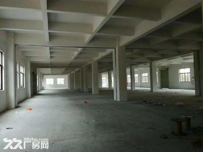独栋亚运大道边3吨货梯石基全新标准三层出租-图(2)