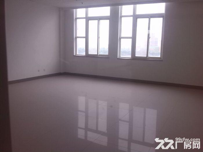 高新区南三环附近800平米优质框架结构厂房-图(2)