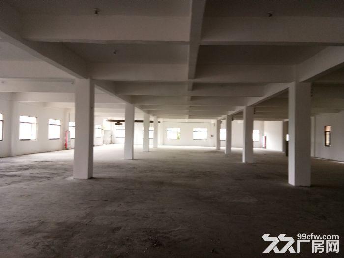 标准厂房2500平3楼租10元/平含票可分割出租-图(1)