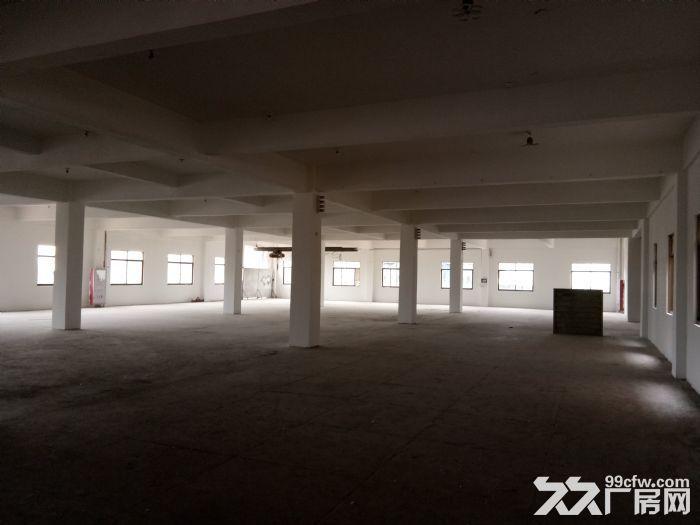 标准厂房2500平3楼租10元/平含票可分割出租-图(2)