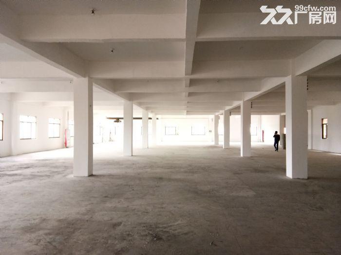 标准厂房2500平3楼租10元/平含票可分割出租-图(3)