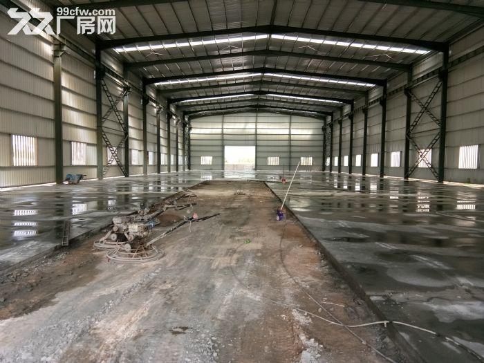全新框架厂房3600平租12元/平仅剩一栋-图(4)