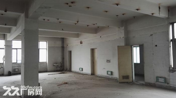 高新区高新路附近1000平米标准框架结构厂房出租-图(3)