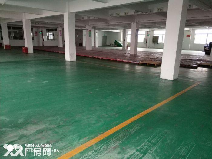 优质南沙工业园仓库出租-图(4)