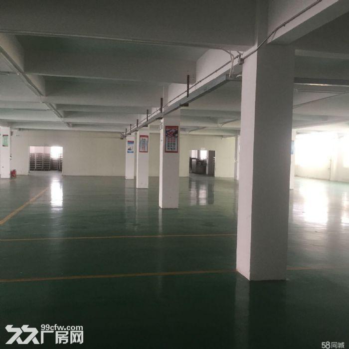 优质南沙工业园仓库出租-图(5)