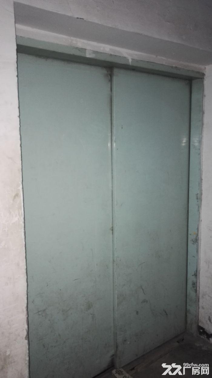 辛家庙1700平米优质整层框架结构厂房出租-图(2)