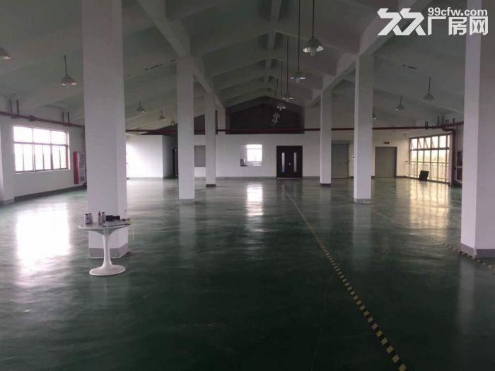 松江工业区1300平厂房出租可环评可近大车-图(4)