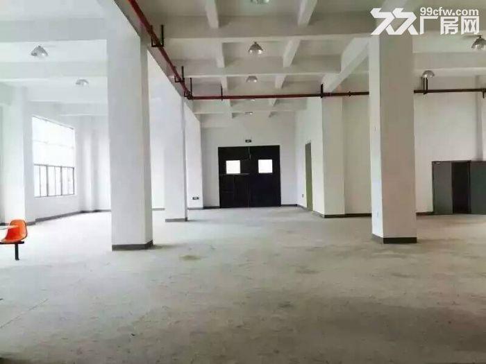松江工业区1300平厂房出租可环评可近大车-图(3)