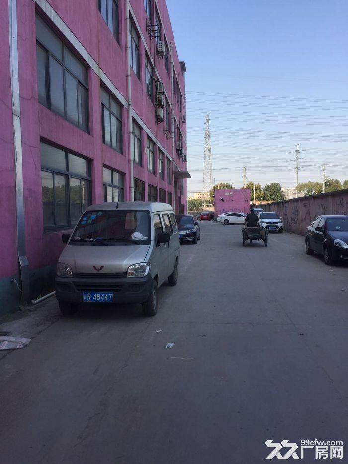 九亭工业区可分割400到1680平方一楼高6米厂房仓库出租,绿证,配套齐全-图(1)