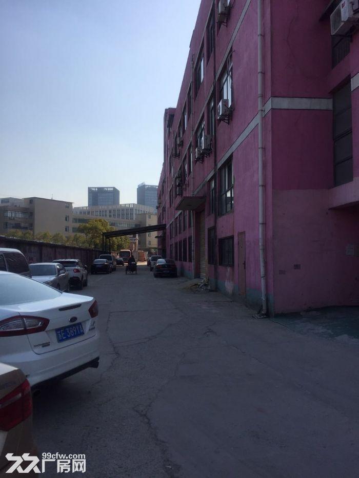 九亭工业区可分割400到1680平方一楼高6米厂房仓库出租,绿证,配套齐全-图(2)