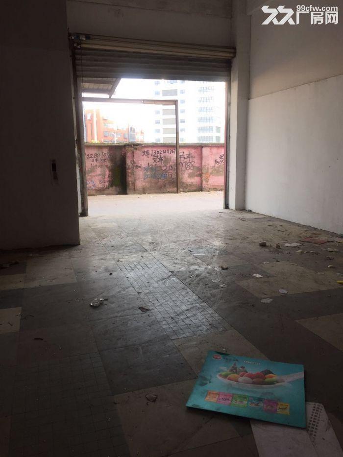 九亭工业区可分割400到1680平方一楼高6米厂房仓库出租,绿证,配套齐全-图(5)