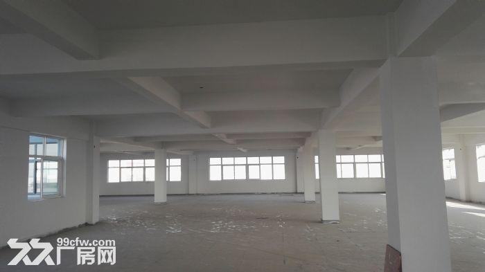 高新区附近4000平米标准框架结构厂房出租-图(2)