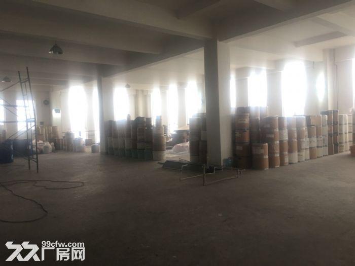 津南八里台3150平米厂房出租-图(3)