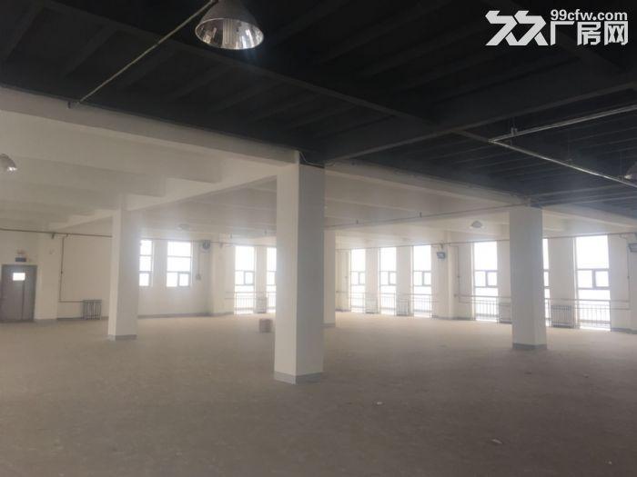 津南八里台3150平米厂房出租-图(5)