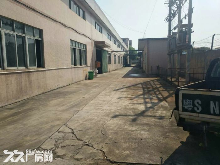 清溪北环路新出混钢结构钢构厂房1800平高10米-图(1)