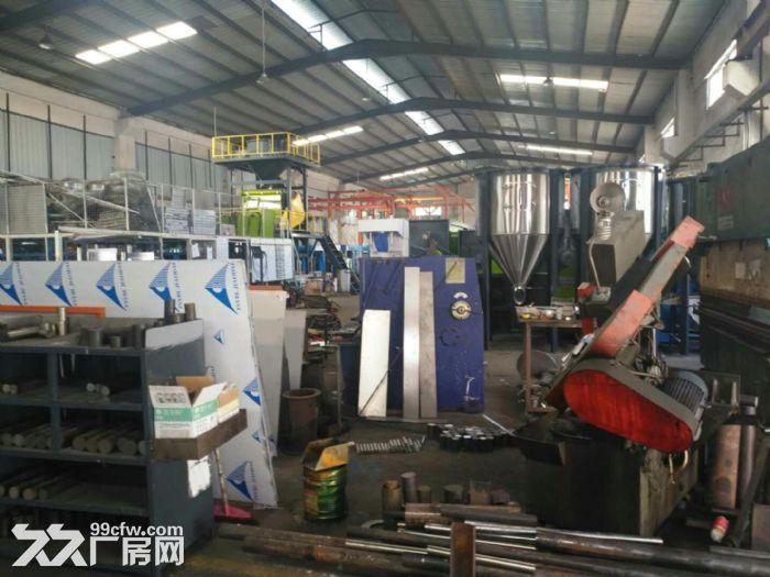 清溪北环路新出混钢结构钢构厂房1800平高10米-图(3)