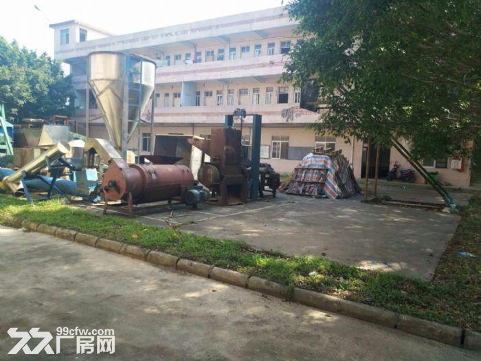 清溪北环路新出混钢结构钢构厂房1800平高10米-图(6)
