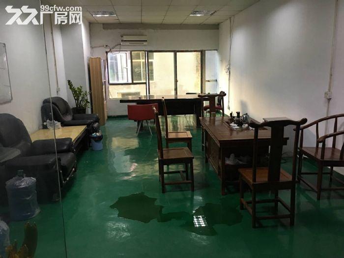 凤岗五联精装修带绿色地坪漆厂房招租800平无尘车间-图(3)