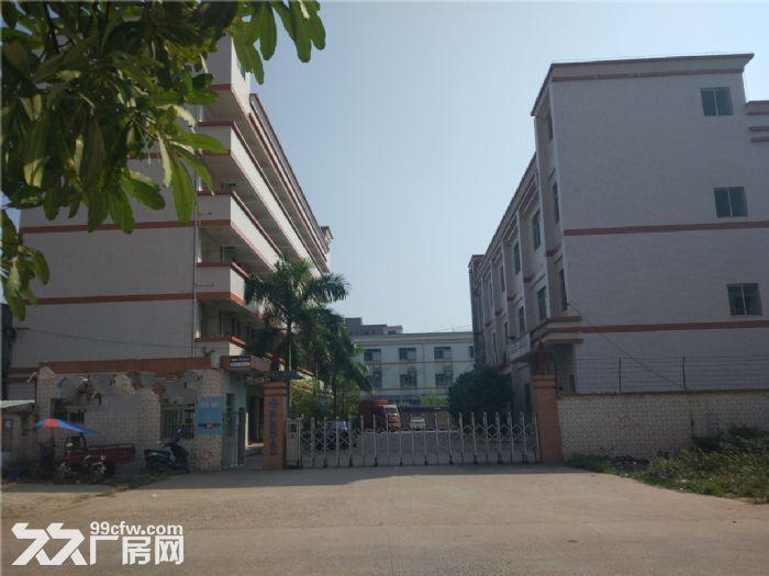 独院标准厂房4000平米出租-图(3)