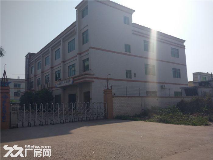 独院标准厂房4000平米出租-图(4)