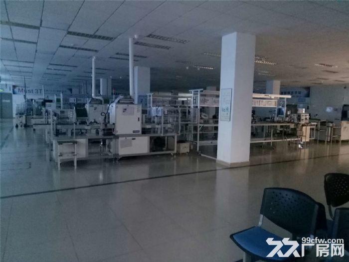 独院标准厂房4000平米出租-图(5)