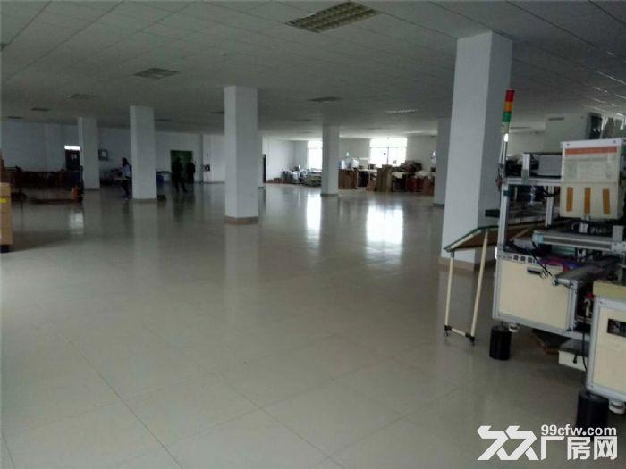 独院标准厂房4000平米出租-图(6)