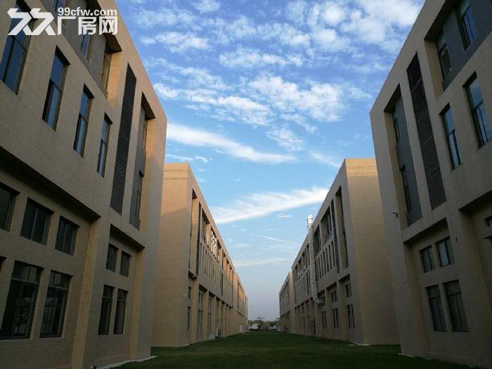 〖50年独立产权〗两证全独栋双拼厂房首层7米出售-图(1)