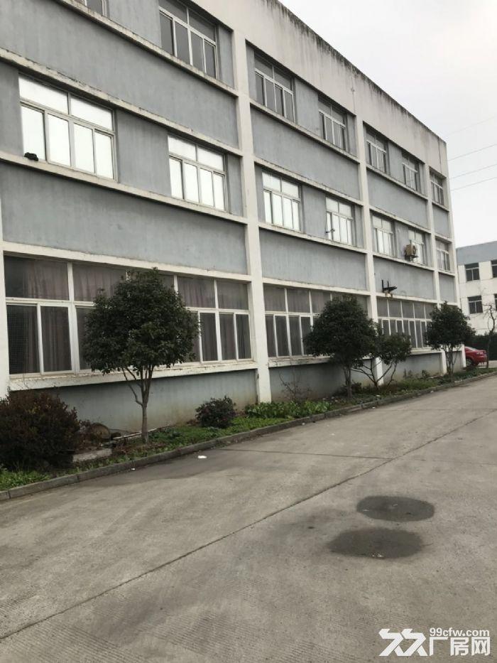 胥口镇新峰路标准厂房第二层出租-图(1)