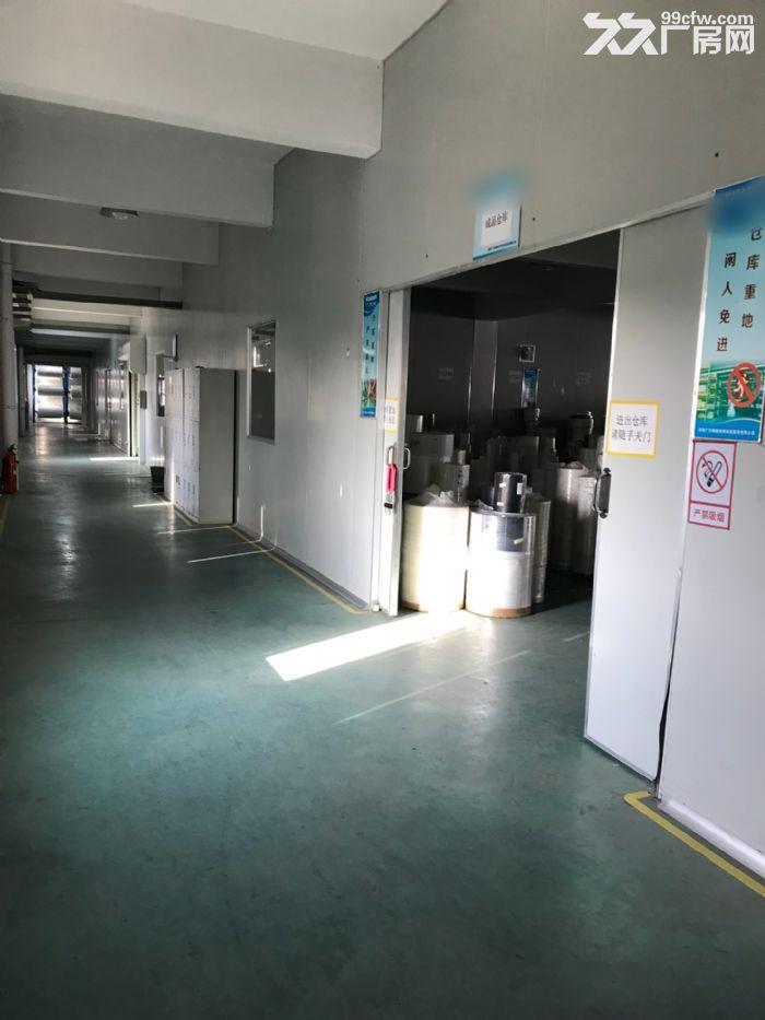 胥口镇新峰路标准厂房第二层出租-图(3)