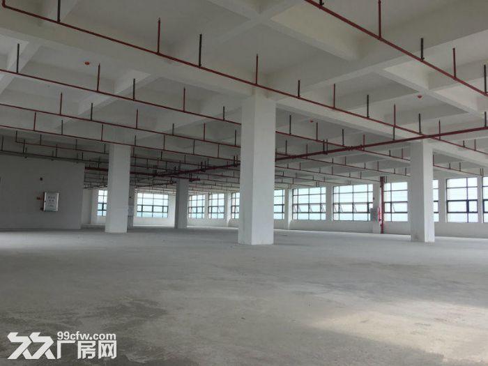 南沙大岗18000全新标准厂房出租,交通便利-图(2)
