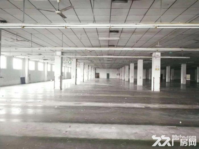东涌市南路边18000方标准厂房出租,交通便利-图(3)