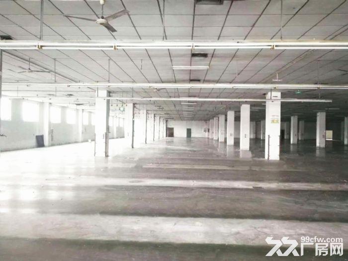 证件齐−工业园1万8千方标厂有5吨货梯电大适合各行业-图(5)