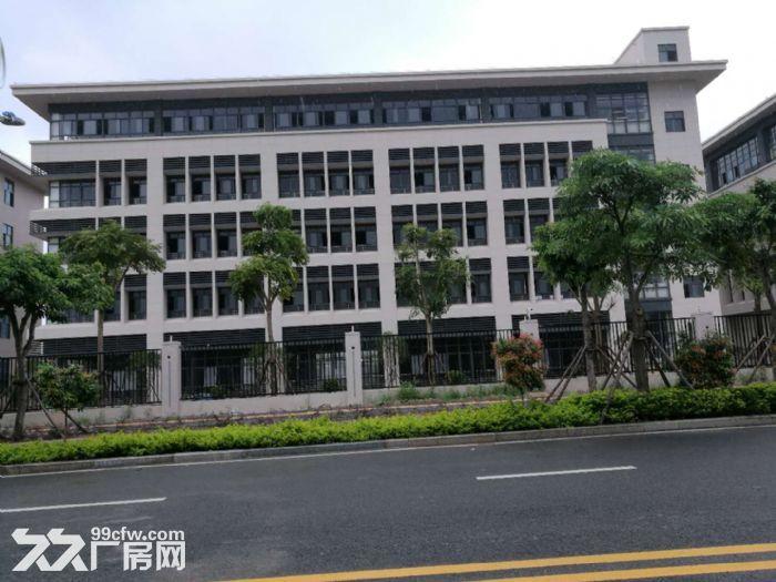 海沧区山边洪东路厂房出租-图(2)