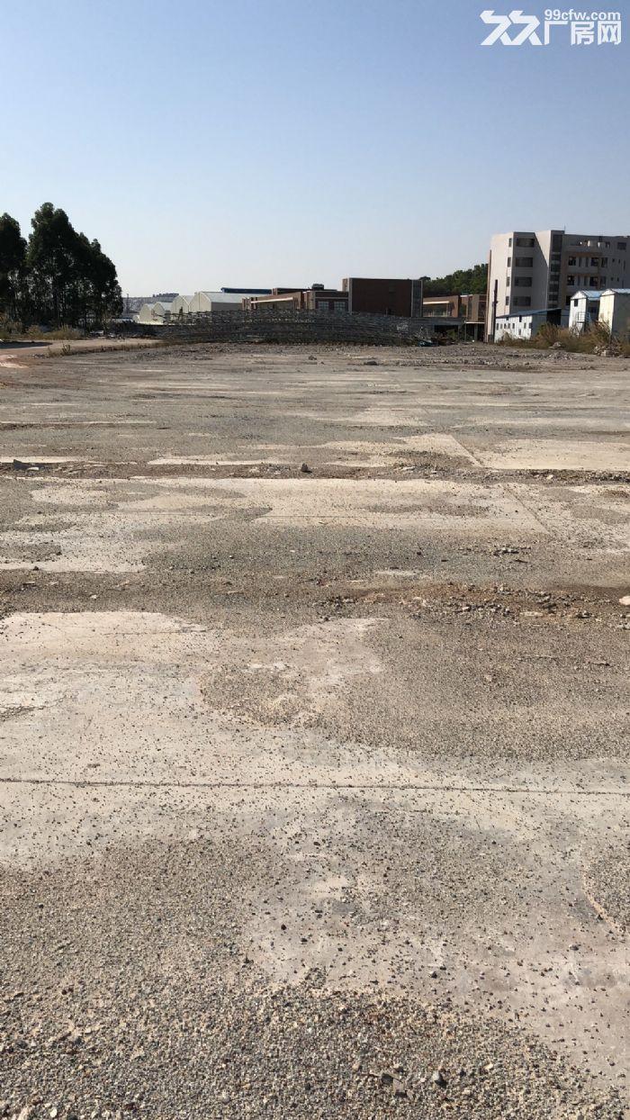 番禺南村金山大道边4万平方米硬化土地出租,交通便利,黄金地段-图(5)