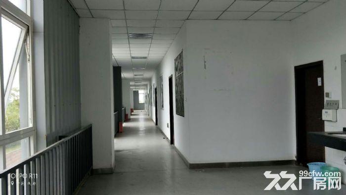 龙泉经开区车城大道5000平米独栋有环评带行车厂房出租-图(5)